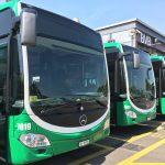 Die Planungen zur Elektrifizierung der BVB-Busflotte sind auf Kurs