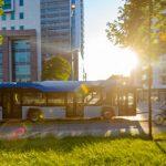 Radom erwirbt neun weitere E-Busse von Solaris