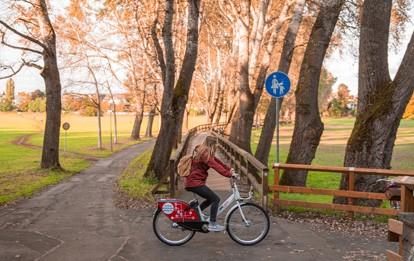 Seit der Verdreifachung der Flotte von 500 auf 1.500 Fahrräder und der Erweiterung der Flexzone auf das gesamte Gebiet innerhalb des Rings konnte das Fahrradverleihsystem VAG Rad in Nürnberg jeweils über 60.000 Ausleihen verzeichnen.