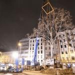 Wiener Linien freuen sich über Privatinitiative zur Rettung der Platane