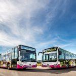 AMCON erhält Großauftrag der Verkehrsgesellschaft Hameln-Pyrmont mbH